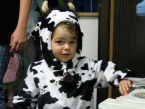 "Cousin Boaz ""the cow"""